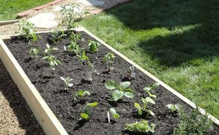 diy raised garden bed, diy, gardening, raised garden beds, woodworking projects, Plant your favorite veggies and herbs