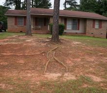 does anyone have any idea what we can do with is front yard nightmare, gardening, landscape