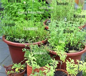 Herb Garden Planter Ideas Part - 50: Grow Your Own Perennial Container Herb Garden, Container Gardening,  Flowers, Gardening, Perennials