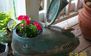 more of my unusual planters, flowers, gardening, repurposing upcycling, Antique vacuum cleaner