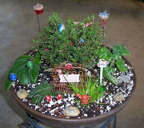 Miniature Gardening Hometalk