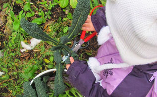 connecting children to the harvest, gardening