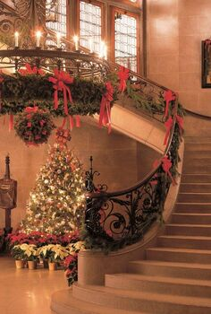 one of my favorite garden spots to visit is biltmore estates in asheville nc the, christmas decorations, gardening, seasonal holiday decor, The Grand Staircase is twined with evergreens filling the 250 rooms with the scent of Christmas