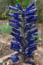 walter reeves has a bottle tree and a bottle vine, gardening, blue bottle tree in Walter s garden