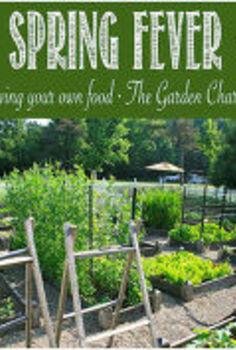 planning ideas for your vegetable garden, gardening