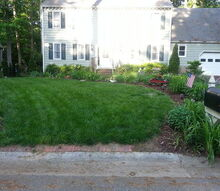 what s my secret for a plush green lawn, flowers, gardening, landscape