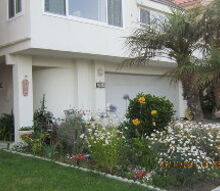 q so california channel islands harbor exterior paint suggestions, curb appeal, painting, Too many options Brown Yellow or green