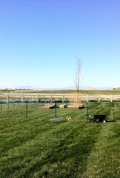 my little farm, gardening, raised garden beds, fencing the farm