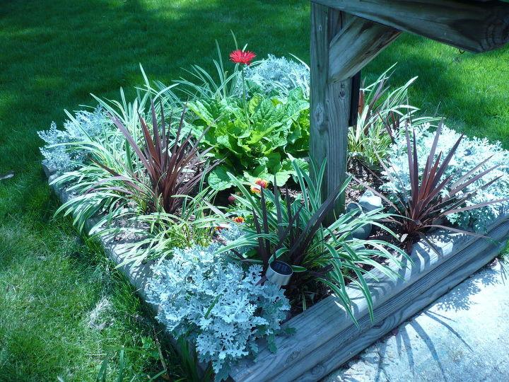 Perennial maintenance free flower bed hometalk for Perennial garden maintenance