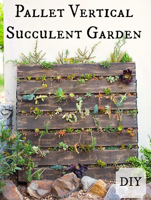 Pallet vertical succulent garden hometalk for Pallet succulent garden