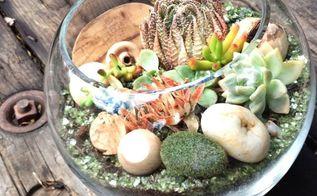 succulent terrarium diy, crafts, gardening, succulents, terrarium
