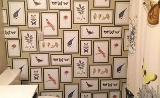 guest bathroom makeover birds butterflies, bathroom ideas, wall decor