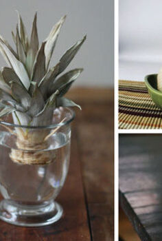 how to regrow vegetables, gardening, how to