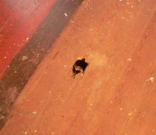 q how to fix holes in these wood floors, flooring, home maintenance repairs, one of the living room holes