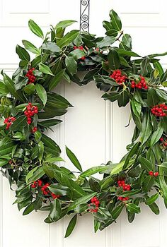making a fresh evergreen wreath, crafts, doors, flowers, gardening, hydrangea, seasonal holiday decor, wreaths, The holly and laurel branches that make up this wreath grow just outside my door I don t think it needs a single thing added to make it look more festive