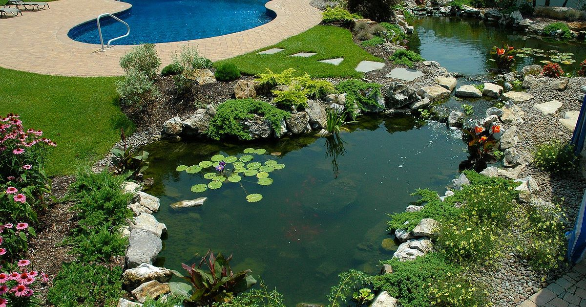 If One Pond Is Good Are 2 Ponds Better Hometalk