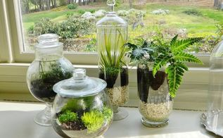 indoor gardening, container gardening, gardening, succulents, terrarium, And here s your end result So easy and so impressive