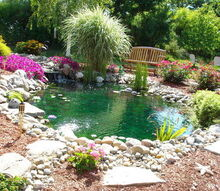 i just wanted to share my pride and joy my goldfish pond it has given us such an, outdoor living, ponds water features, My backyard goldfish pond