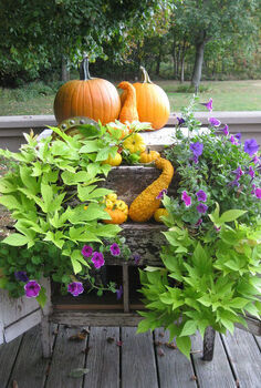 fall planter, repurposing upcycling, seasonal holiday d cor