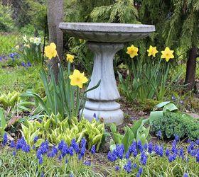 Gardening Tips Plan Spring Garden, Flowers, Gardening