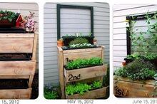 garden planter dresser, gardening, repurposing upcycling, The progression
