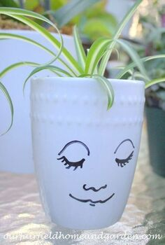 mug pots, container gardening, crafts, gardening, Mug Pots plant with houseplant divisions