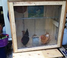 a summer chicken coop, diy, doors, homesteading, outdoor living, repurposing upcycling, woodworking projects