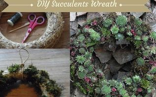 easy diy succulents wreath, crafts, flowers, gardening, succulents, wreaths