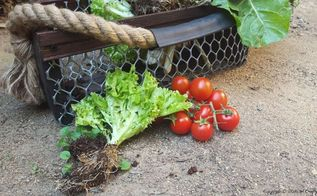 celebrate nature with this easy diy harvesting basket, crafts, gardening, how to, pallet