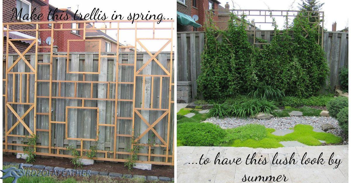 Build a trellis and privacy screen hometalk - Building trellises property ...