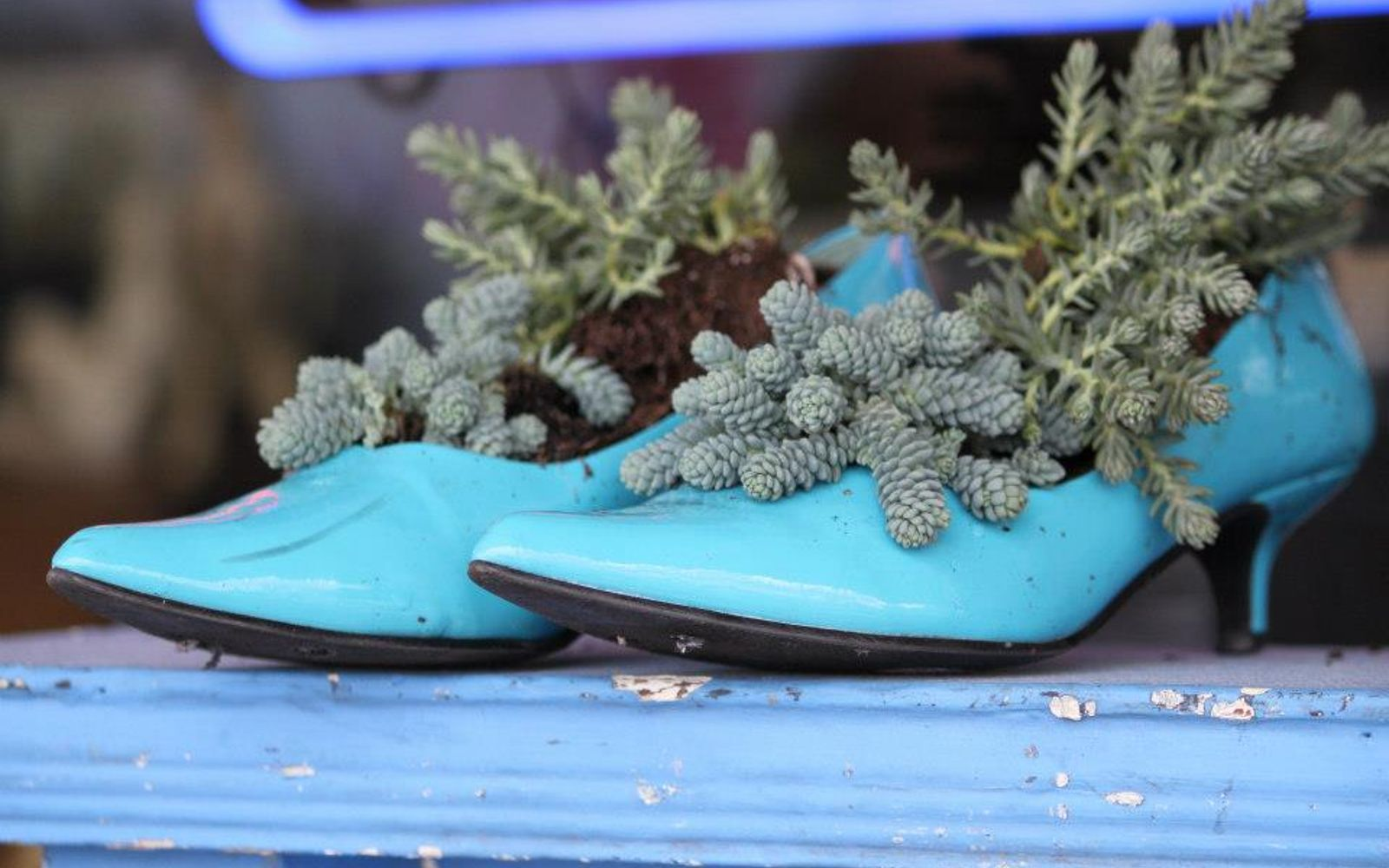 s these are the hottest diy spring trends of 2016, crafts, seasonal holiday decor, Stop tossing old shoes put them outside