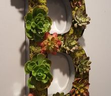 easy industrial succulent monogram, crafts, flowers, gardening, succulents, wall decor
