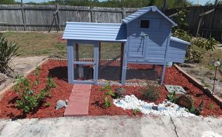 every home needs curb appeal, curb appeal, homesteading, The Lazy A Hens now have a landscaped yard
