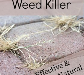 Diy Weed Killer, Gardening, Go Green, Pest Control