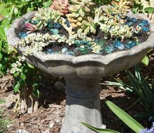 up cycled fountain, container gardening, flowers, gardening, repurposing upcycling, succulents