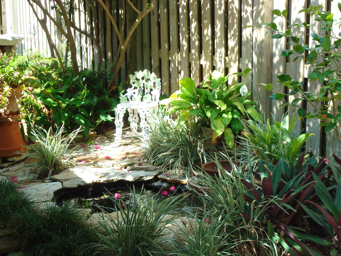 Make A Small Pond Surrounded By Tall Grasses 11 Stunning Flowers That  Thrive In Shade Hometalk