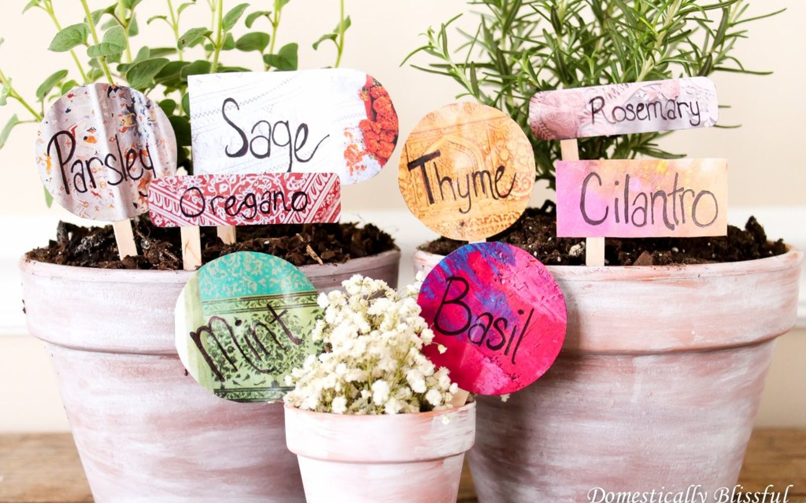 s 12 adorable plant markers from your junk drawer, gardening, repurposing upcycling, Cut shapes out of that old bent magazine