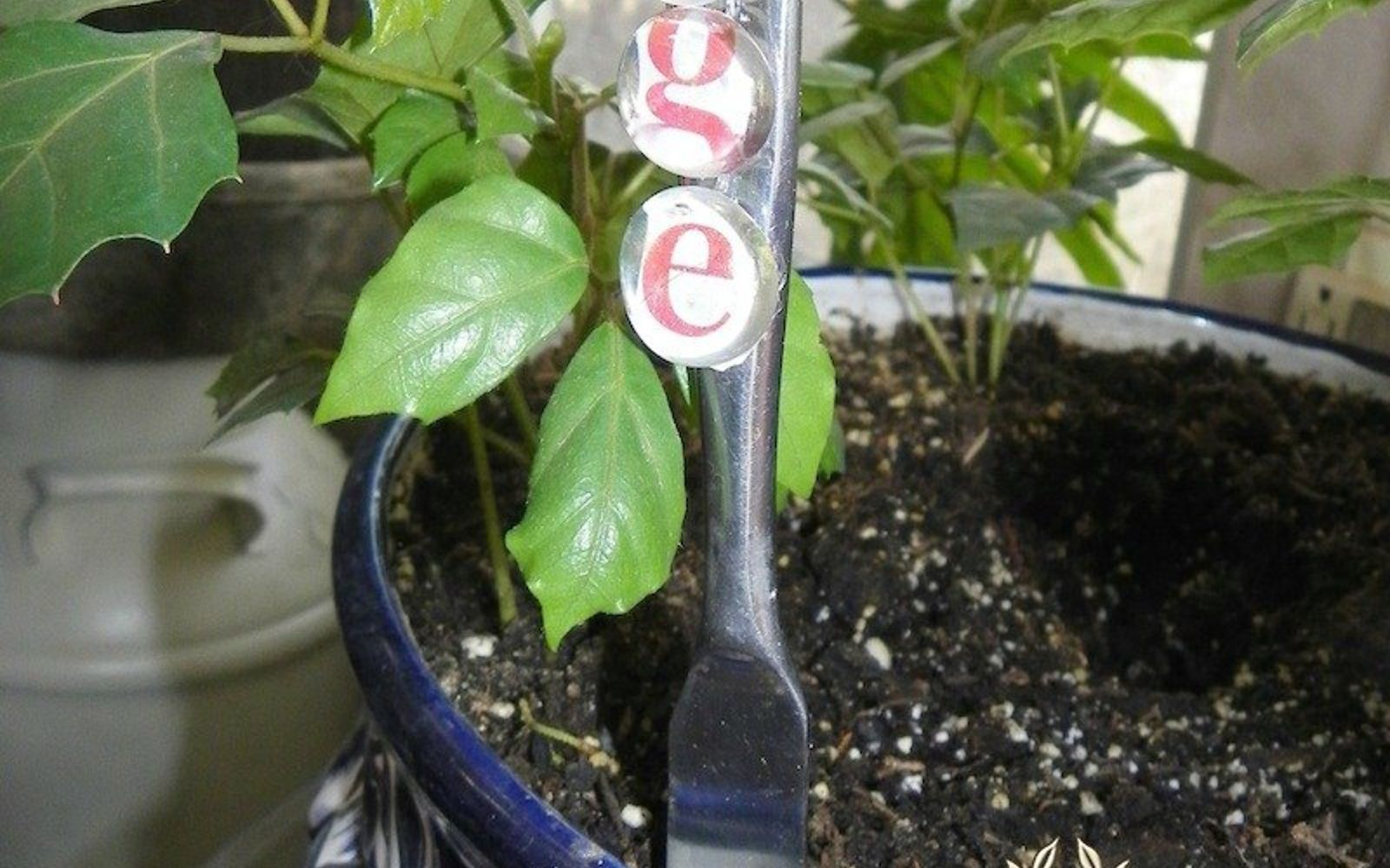 s 12 adorable plant markers from your junk drawer, gardening, repurposing upcycling, Scour your drawer for a few glass gems