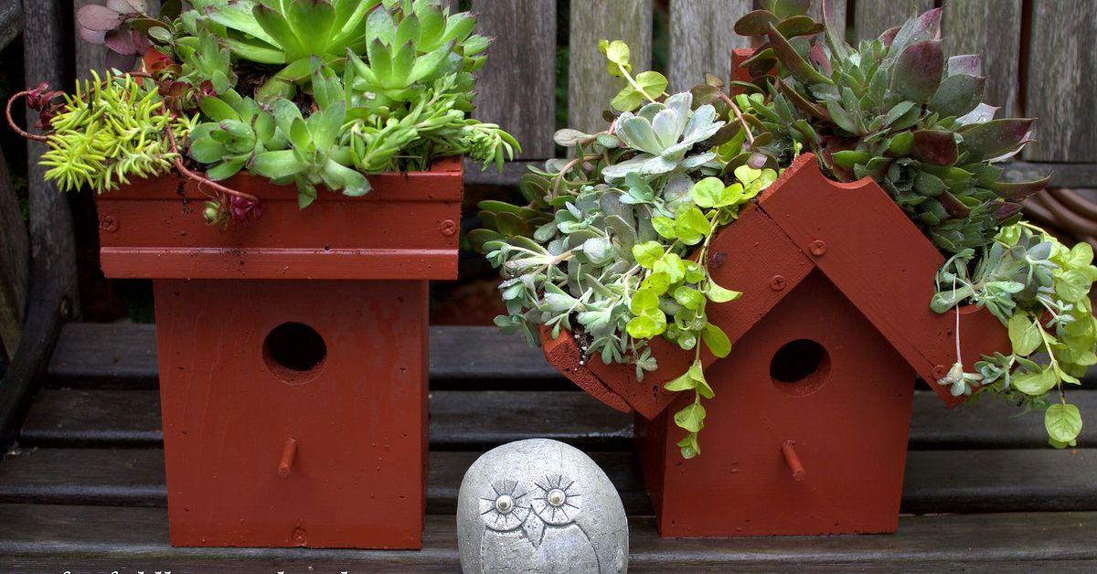 Easy Diy Green Roof Birdhouses Hometalk