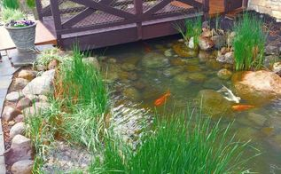 heavy duty pond clean out, cleaning tips, outdoors cleaning, ponds water features