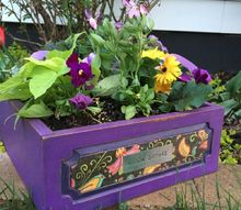 old drawer becomes a planter in 1 hour, chalk paint, container gardening, gardening, painted furniture, repurposing upcycling
