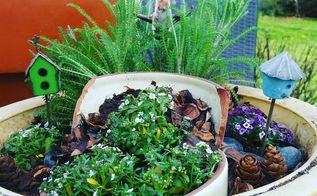 easy diy landscaping ideas for fairy gardens, crafts, gardening, My First Fairy Garden
