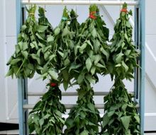 diy solar herb drying methods, gardening, how to