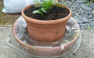 planter with water reserve and self fight slugs and snails, container gardening, gardening, how to, pest control