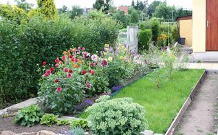 the story of our garden, gardening, landscape