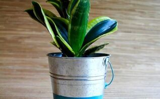 painted bucket flower pot, container gardening, crafts, gardening