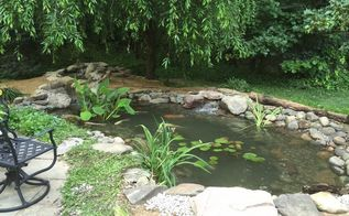 pond renovation, ponds water features