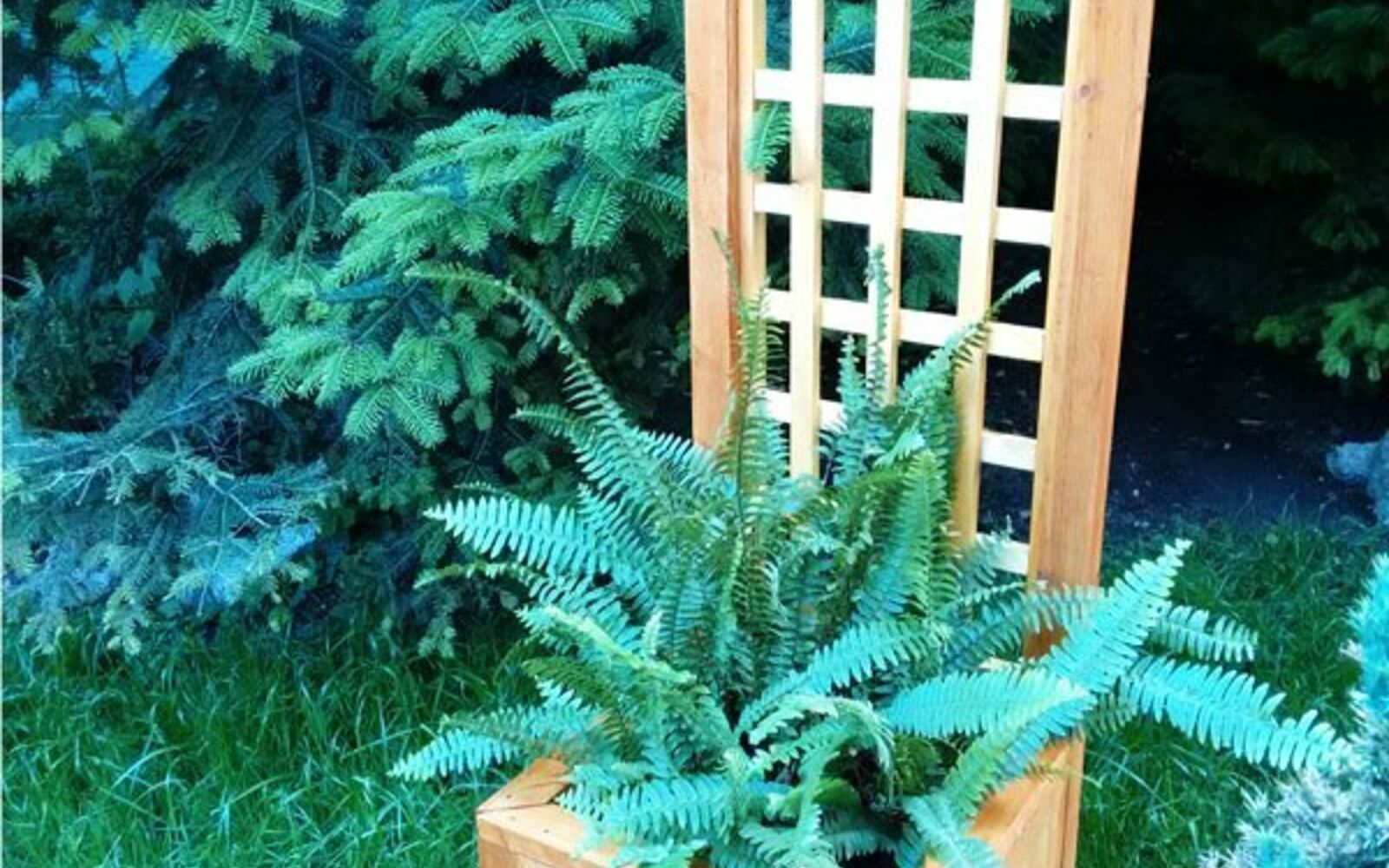 s 17 ways to build a gorgeous garden trellis this summer, gardening, Build a trellis planter for any corner