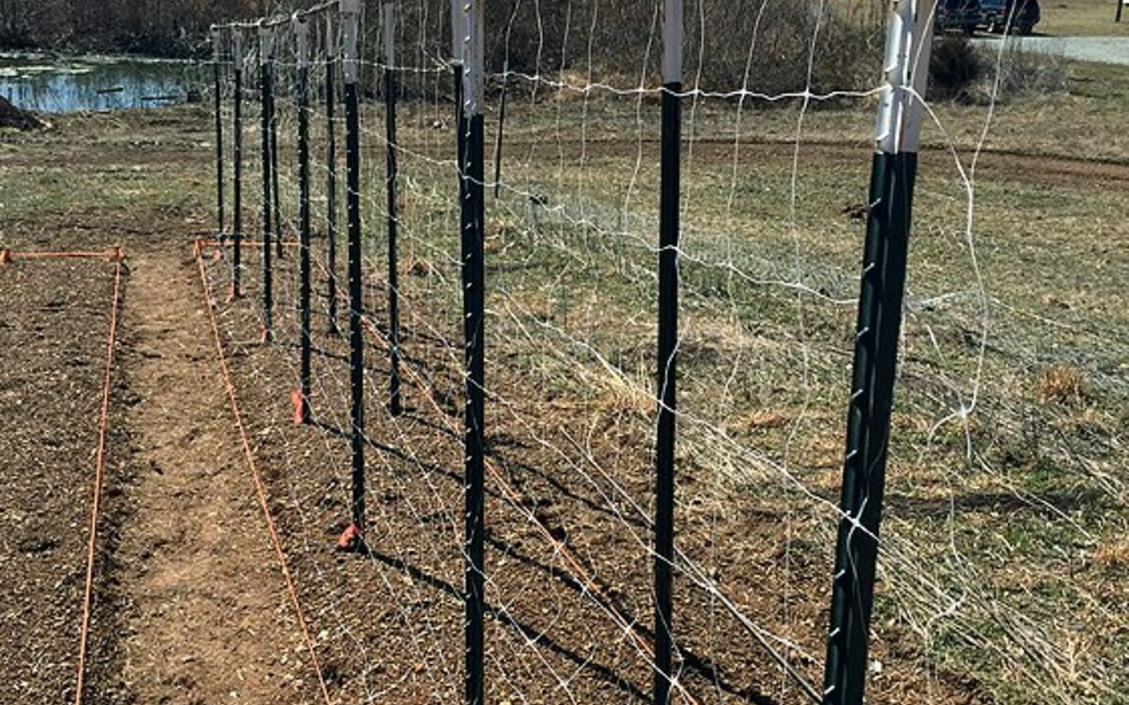s 17 ways to build a gorgeous garden trellis this summer, gardening, Use PVC pipes and rebar for tomatoes