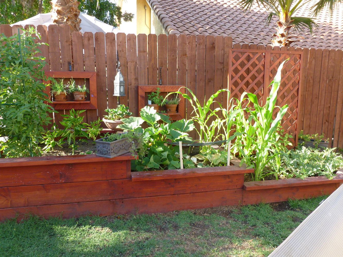 13 easiest ways to build a raised vegetable bed in your for Raised vegetable garden beds